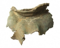 Roman equestrian statue - neck and mandible fragment