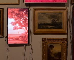 Evan Roth's Red Lines with Landscapes at the Usher Gallery, 2019. Photograph by Jules Lister